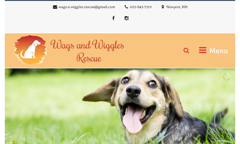 wagsnwiggles.org