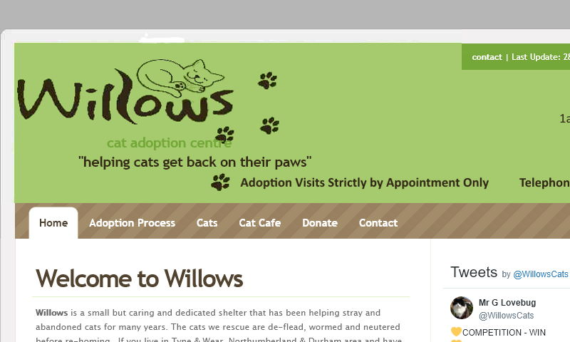 willows-cats.co.uk